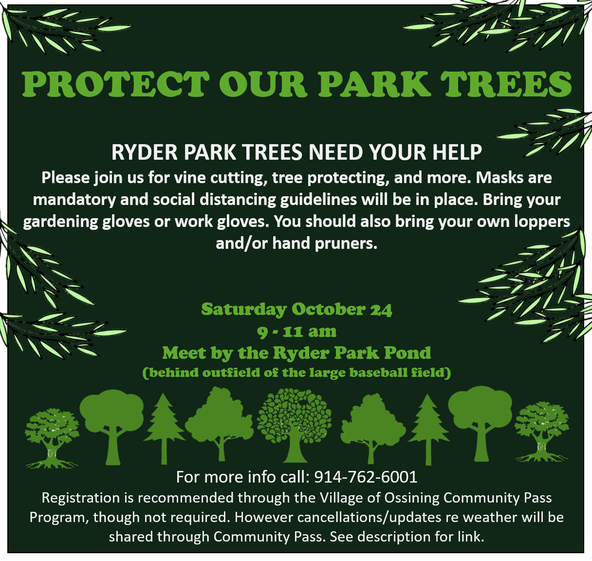 Protect our Park Trees Social Media