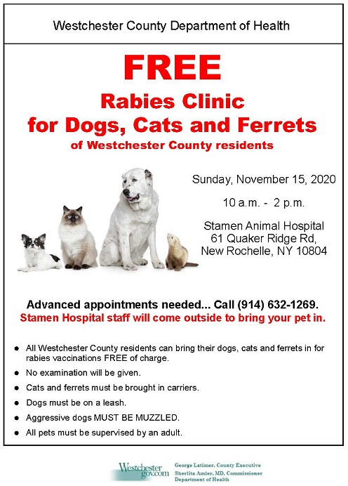 Free Rabies Clinic 11.15.20 Stamen Animal Hospital New Rochelle